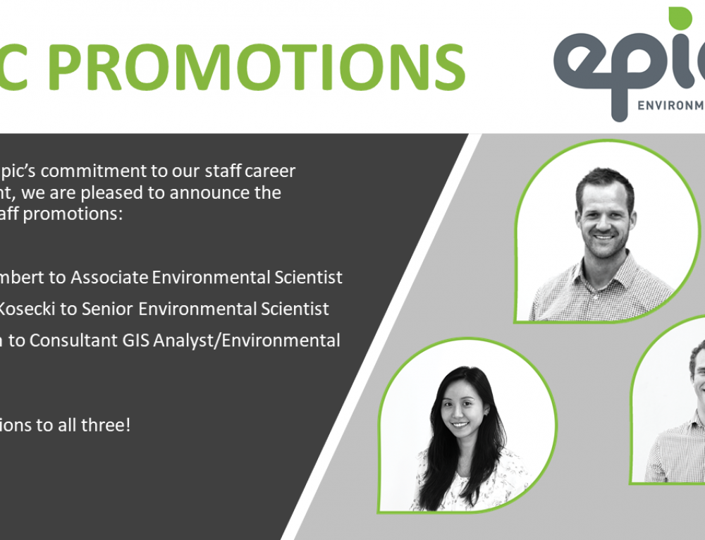 Congratulations to Scott, Charles and Yan on their recent promotions!