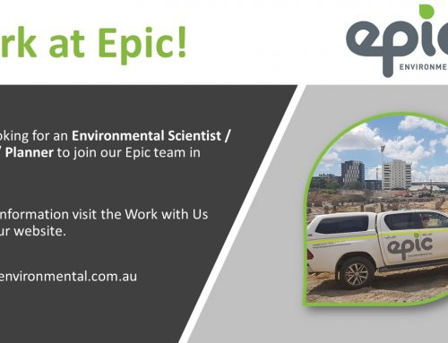 We are hiring! Our Sydney office is looking for an Environmental Scientist.