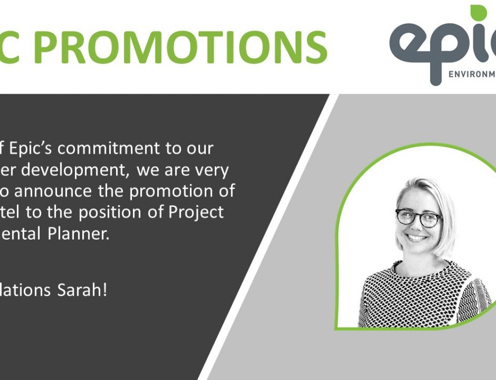 Congratulations on your promotion, Sarah!