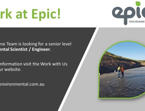 We are hiring! Our Brisbane office is looking for an Senior / Associate Level Environmental Scientist / Engineer