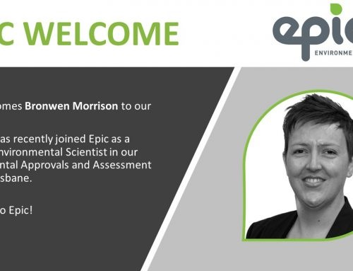 Welcome to Epic, Bronwen Morrison